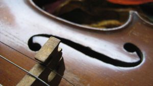 Where Was the Violin Invented?