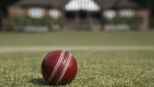 What Is the Weight of a Cricket Ball?