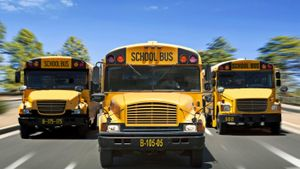 What are the dimensions of a school bus?