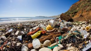 What Causes Ocean Pollution?