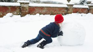 What is the chemical formula for snow?