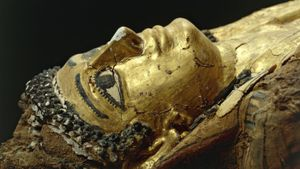 Why Did They Make Mummies?