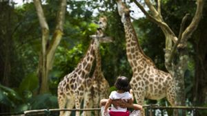 Why Are Zoos Important?