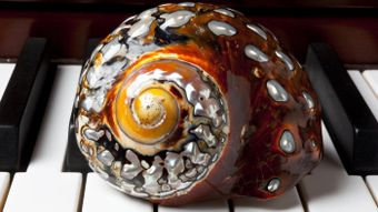 What Are Some Crafts That Can Be Made With Shells?