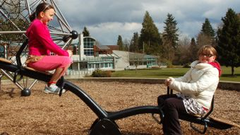 Who Invented the Seesaw?