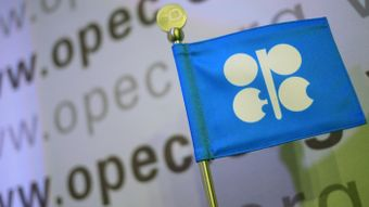 Why Was OPEC Formed?