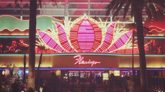 Who Opened the Flamingo Casino?