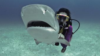 What Are the Responsibilities of a Marine Biologist?