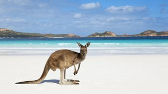What Two Oceans Touch Australia?