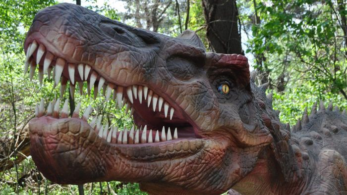 What do you call a person who studies dinosaurs?