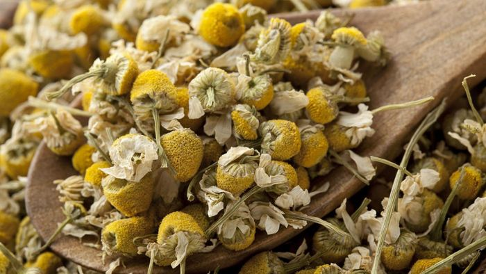 What Is Manzanilla Tea Used For?