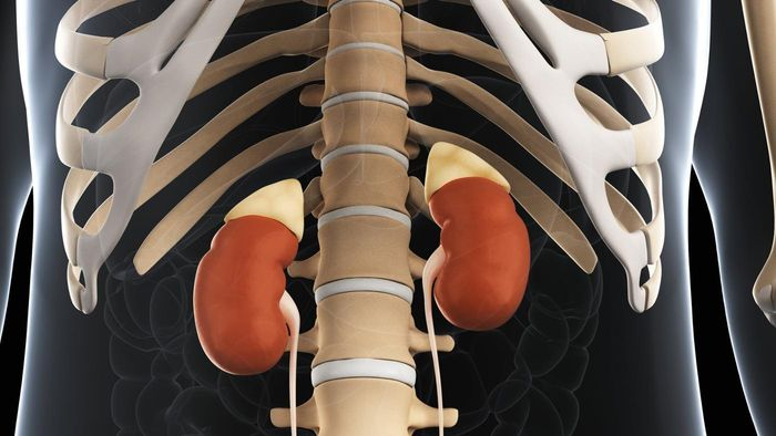 Are adrenal gland tumors usually cancerous?