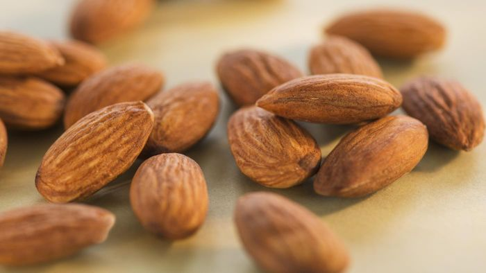 Almonds Ok For Dogs To Eat