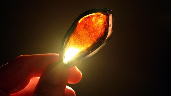 How Is Amber Formed?