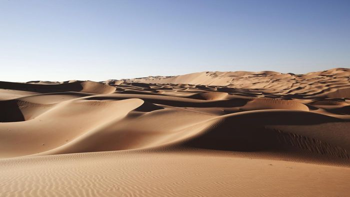 What Are Some Facts About the Arabian Desert?
