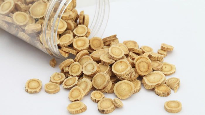 When Was Astragalus First Used for Medicine?