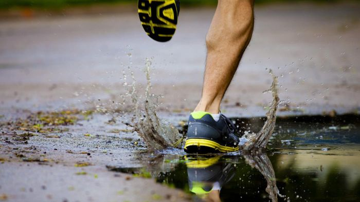 What Is the Average Jogging Speed of a Human?