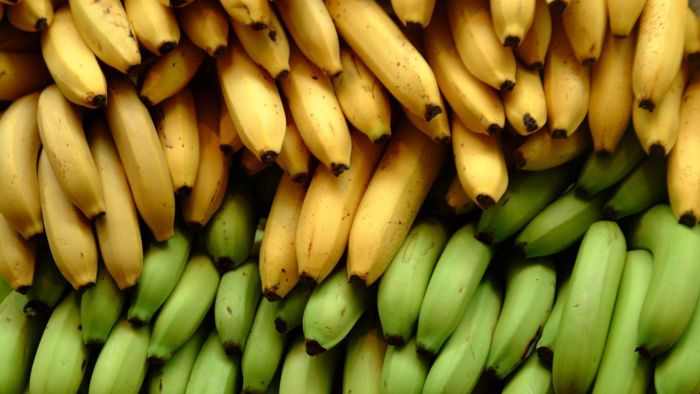 Are bananas good for diabetics?