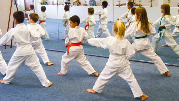 What are some basic moves in karate?