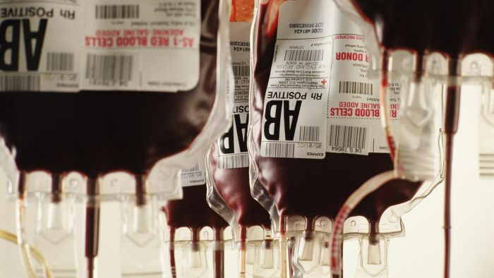 What Is Blood Type Compatibility?