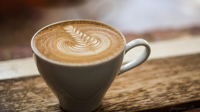 What Brand Offers the Highest Rated Cappuccino Machine?