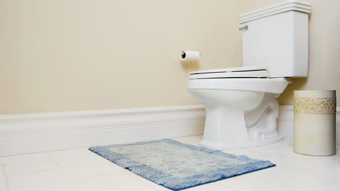 How Can I Adjust the Toilet Water Level?