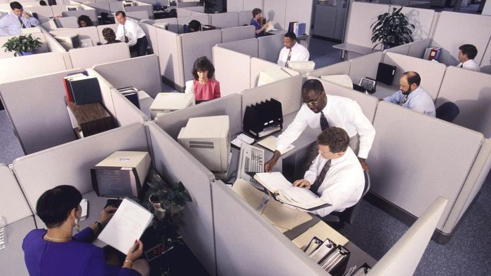 Where Can You Buy Cubicle Wallpaper?