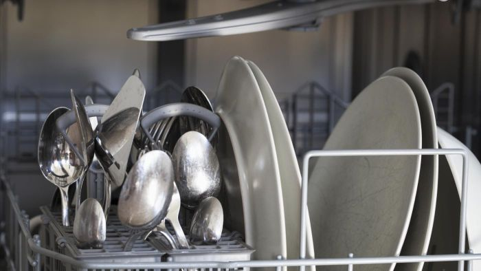 Can you clean a dishwasher with vinegar?