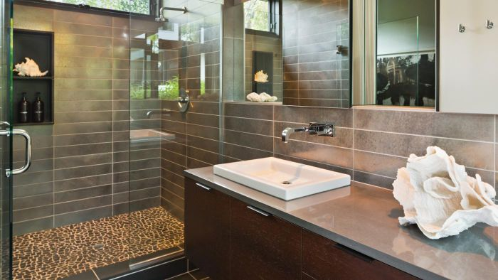 How Can You Clean Shower Doors?