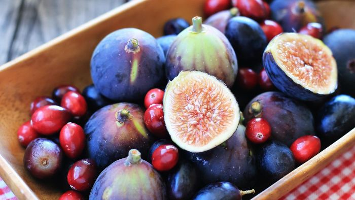 Can Dogs Safely Eat Figs?