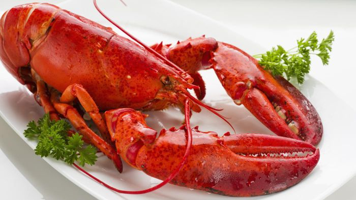 Can You Freeze Cooked Lobster?