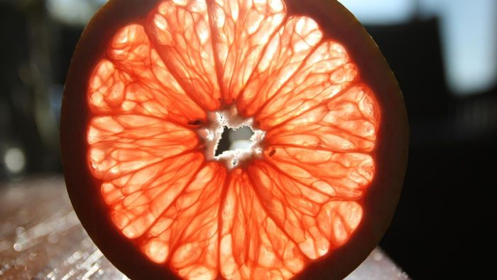 Can Fruits Make Electricity?