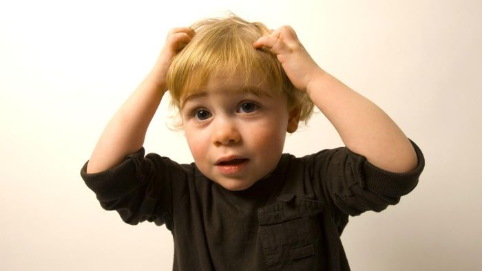 Can Head Lice Make You Sick?