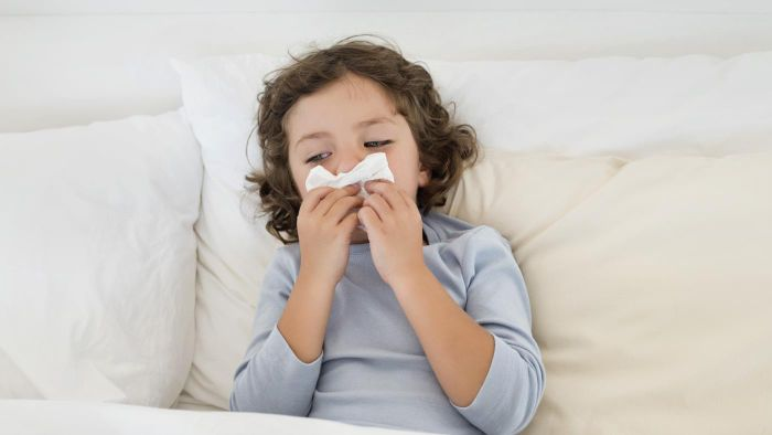 How Can You Live With Allergies to Dust Mites?