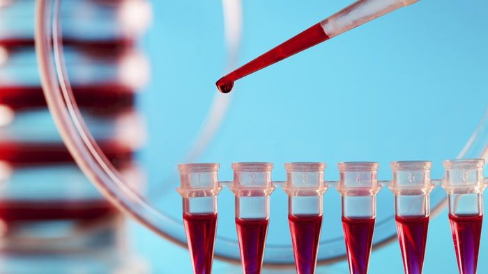 Can Low Blood Platelet Counts Be Reversed With Changes in Diet?