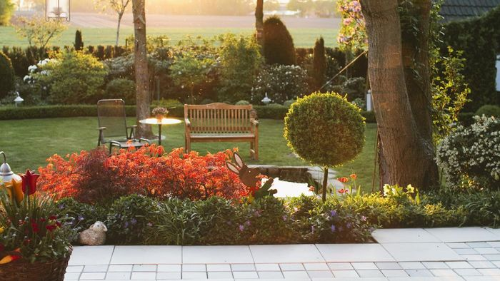 Where Can You Find Photos of Lawns and Gardens?