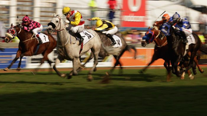 Where Can You Find Results for Gulfstream's Horse Racing?