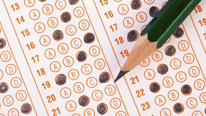 Where Can You Find Samples of Driver's License Tests?