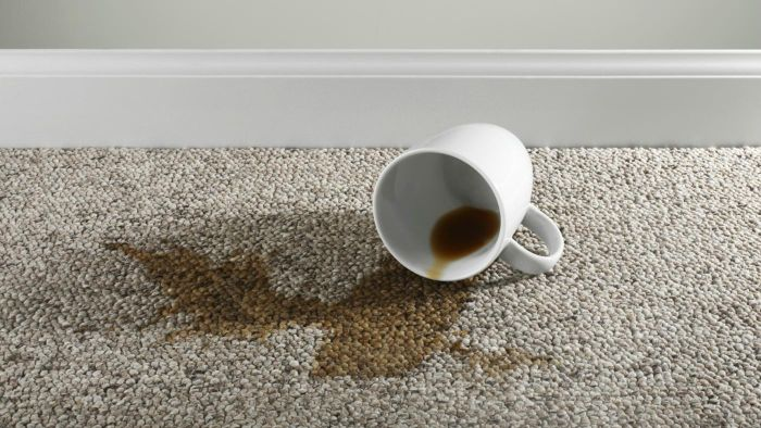 How Can Someone Remove Dried Coffee Stains From A Carpet