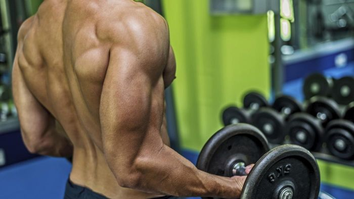 How Can You Use a Workout Routine to Get Ripped?