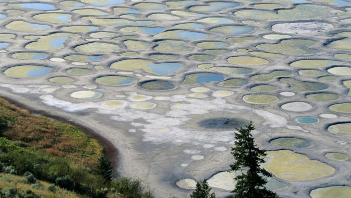 Can You Walk on Canada's Spotted Lake?