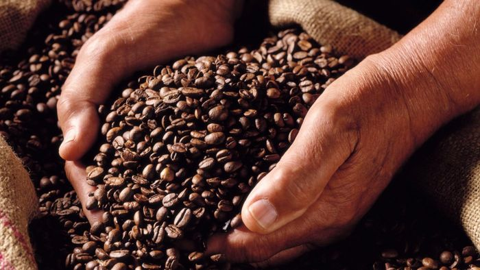 Can you grind coffee beans in a blender?