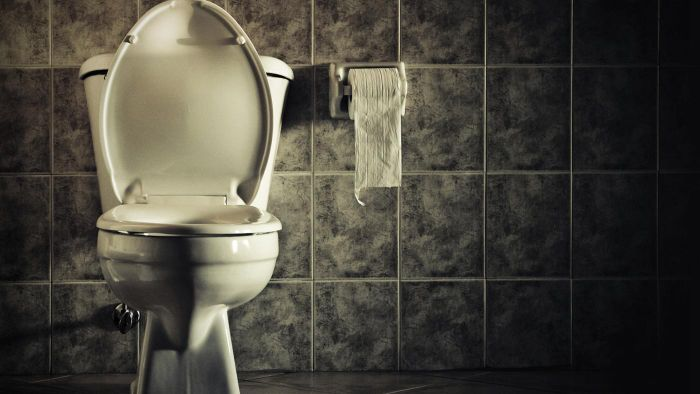 What Causes Excessive Bowel Movements?