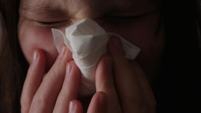 What Causes Sinus Problems?
