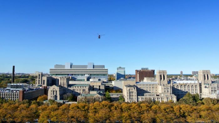 What Is the Chicago School of Criminology?