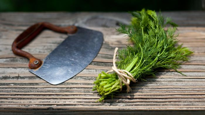 How Do You Chop Fresh Dill?