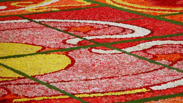 Which City Features a Giant Flower Carpet Every Two Years?