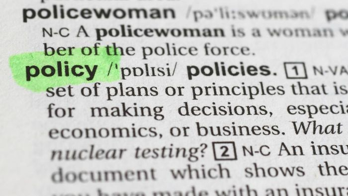 What Are Company Policies  ReferenceCom