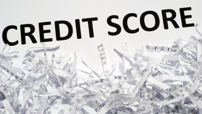 How Is Your Credit Score Determined in Canada?
