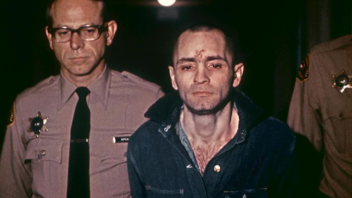 What crimes did the Manson family commit?
